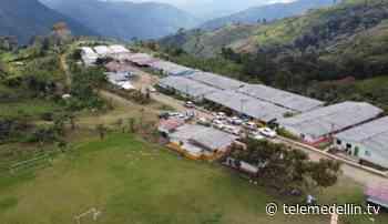 Convenio permitirá construir 109 viviendas para excombatientes en Dabeiba - Telemedellín