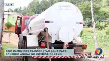 Dois caminhões transportam água para consumo animal no interior de Xaxim - ND Mais