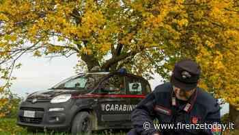 """Calenzano: abbattono una femmina di capriolo, """"bracconieri"""" denunciati in flagranza - FirenzeToday"""