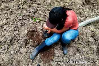 Niños y adolescentes defienden el espacio público rural en Pasca, Cundinamarca ¡Buenas Noticias! - Noticias Día a Día
