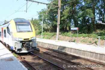 Ook schepencollege ziet hoge pyloon aan treinhalte niet zitten - Het Nieuwsblad