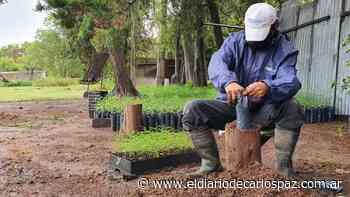 Vivero Provincial de Villa del Totoral: 75 años produciendo plantas - El Diario de Carlos Paz