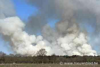 """Grote natuurbranden in het voorjaar: """"Pijpenstrootje brandt dan als hooi"""""""