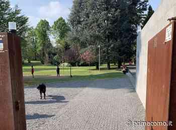 Nichel nell'acqua: fontanelle chiuse nel parco di Porta Spinola - Prima Como