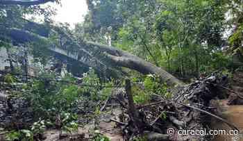 Un fuerte vendaval azotó la población del Guamo, Tolima - Caracol Radio
