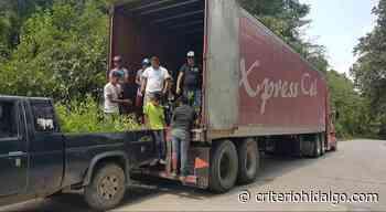 Realizan jornada de reforestación en San Bartolo Tutotepec - Criterio Hidalgo