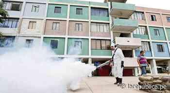 Dengue: el 70% de los casos están en Chosica y Lima Cercado - LaRepública.pe