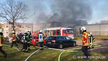 »Das Unkraut ist jetzt weg und die Halle leider auch«: Einfamilienhaus und Fabrik geraten bei Gartenarbeiten in Brand - DER SPIEGEL