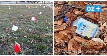 Rügen: In Putbus landen reihenweise Schnapsflaschen in der Natur - Ostsee Zeitung