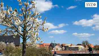 Frühling in Boizenburg: Mit offenen Augen auf Farbtupfer-Suche   svz.de - svz – Schweriner Volkszeitung