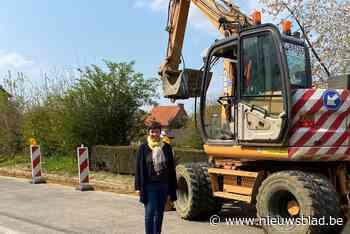 Bewoners pleiten voor eenrichtingsverkeer na heraanleg straa... (Holsbeek) - Het Nieuwsblad