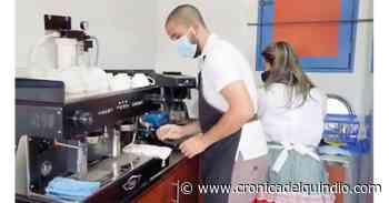 Café Mujer de Circasia, una taza con aroma de mujeres berracas - La Cronica del Quindio