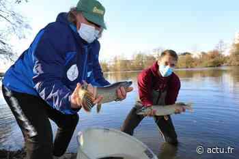 Seine-et-Marne : où pêcher dans le Pays de Meaux ? - La Marne