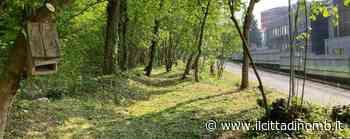 Villasanta: via alle pulizie della ciclopedonale di Mulini Asciutti - Il Cittadino di Monza e Brianza