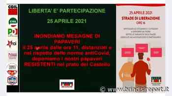 Per la Liberazione l'Anpi inonda Mesagne di papaveri rossi - BrindisiReport