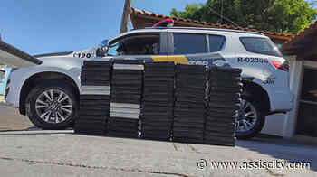 79 tabletes de cocaína são apreendidos em Ourinhos - Assiscity