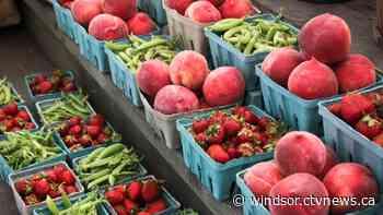 Amherstburg Farmers' Market season starts bright and early Saturday - CTV News Windsor