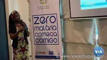 """""""Principal causa de morte em Angola é a malária"""", Dra. Arciolanda Gravata - Voz da América"""