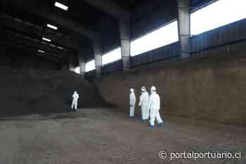 Superintendencia del Medio Ambiente Formula cuatro cargos a Terminal Puerto Arica - PortalPortuario