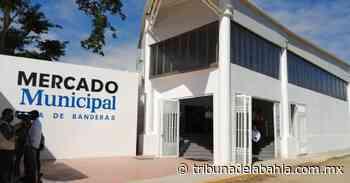 Siguiente noticia Inauguran el mercado municipal de San José del Valle - Noticias en Puerto Vallarta - Tribuna de la Bahía