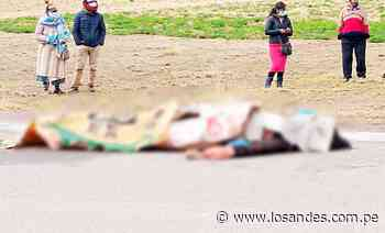 Vehículo arrolla y mata a mujer en la vía Ilave-Juli - Los Andes Perú