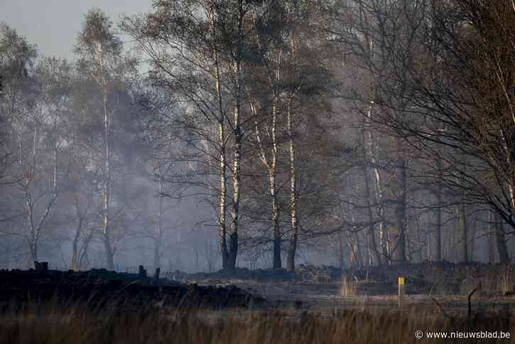 Enorme factuur voor grote natuurbrand in Brecht: gaan wij dat moeten betalen?