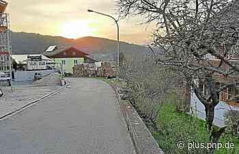 Neue LED-Leuchten: In Kollnburg hat es sich ausgepeitscht - PNP Plus