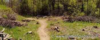 Casatenovo, Motodromo abusivo spianato dal contadino - Cronaca, Casatenovo - La Provincia di Lecco