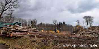 Zwischenlager - Raupen ebnen Fläche für A-49-Betonwerk - Oberhessische Presse