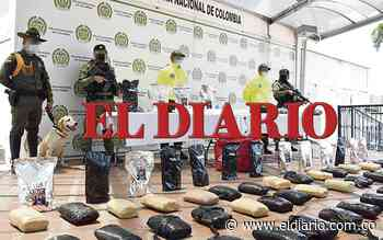 Hallaron gran cantidad de estupefacientes en vereda de Dosquebradas - El Diario de Otún