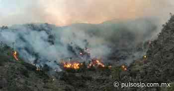 Sigue activo incendio forestal en San Bartolo - Pulso Diario de San Luis