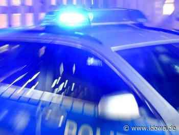 Neustadt an der Donau - Mann (52) betrunken mit Jagdgewehr auf Patrouille - idowa