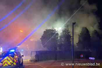 Bewoner ontsnapt op nippertje met hond aan uitslaande brand in Diepenbeek
