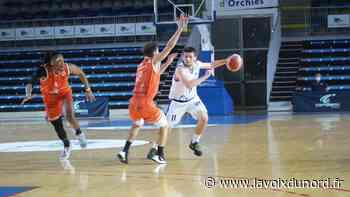 Basket-ball (Nationale 1) : le BC Orchies regoûte enfin à la victoire en Alsace - La Voix du Nord