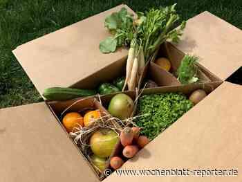 Obst- und Gemüsekiste: Meine Erfahrungen mit der Lieferbox - Landstuhl - Wochenblatt-Reporter