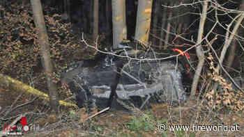 Schweiz: Pkw prallt gegen Baum → zwei Todesopfer in Dornach   Fireworld.at - Fireworld.at