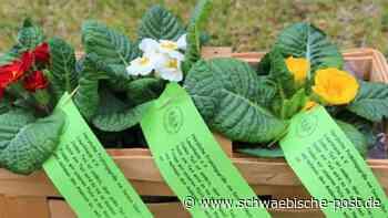 Ein Frühlingsgruß vom Obst- und Gartenbauverein | Lauchheim - Schwäbische Post
