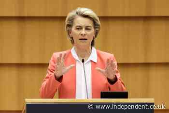 EU chief Ursula von der Leyen admits she felt 'hurt' and 'alone' during Turkey chair snub