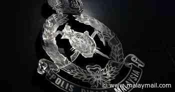 Three killed, one seriously injured in Kuala Nerang crash - Malay Mail