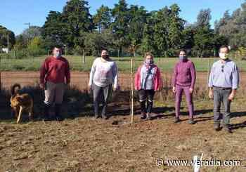 """Plantaron un algarrobo negro por el """"Día Mundial de la Madre Tierra"""" - Veradia.com"""