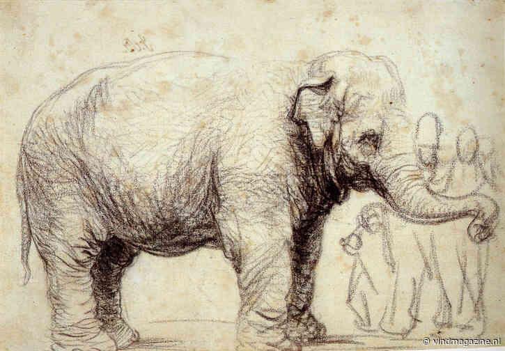 Hansken, Rembrandts olifant