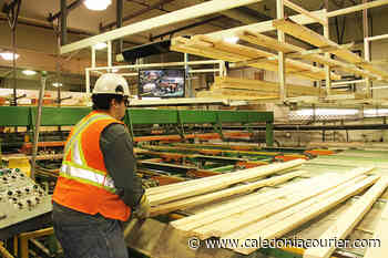 Fort St. James Mayor worried about potential downfalls when hot lumber market cools – Caledonia Courier - Caledonia Courier