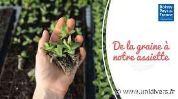 Atelier : Repiquage et rempotage, les premiers pas du jardinage FoodLab 95 mercredi 12 mai 2021 - Unidivers