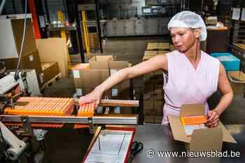 Tony's Chocolonely koopt Vlaamse fabriek (Borsbeek) - Het Nieuwsblad