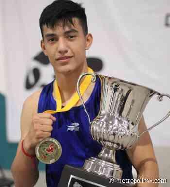 """""""El Monstruo"""" de Guerrero Negro campeón nacional de Festival Olímpico de Box - MetropoliMx"""