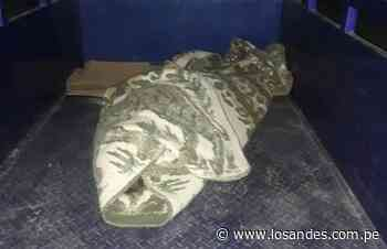 Varón muere en trágico accidente en la vía Desaguadero - Los Andes Perú