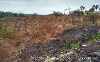 De tres a cinco incendios se atienden al día: PC Huixtla - El Heraldo de Chiapas