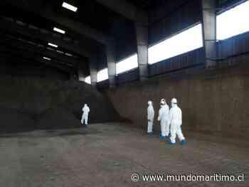 Superintendencia del Medio Ambiente formuló cuatro cargos contra Terminal Puerto Arica - MundoMaritimo.cl
