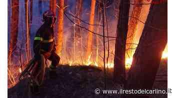 Modigliana, incendio sul monte Trebbio: ore di lavoro per domarlo - il Resto del Carlino
