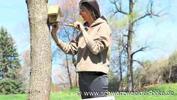 Dotternhausen: Einfach etwas Gutes tun für die Natur - Schwarzwälder Bote